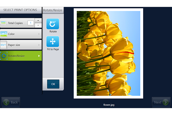 Screen showing editing options for image